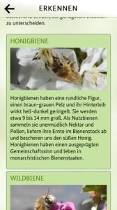 Bienen App ist ein kostenloser Download