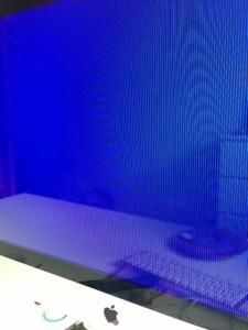 iMac Bluescreen - ein Fall für AppleCare
