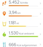 Fitbit App 1