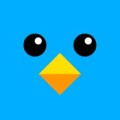 Mr Flap Icon
