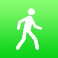 Schrittzaeler Icon