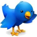 Twitterrific 5 Icon