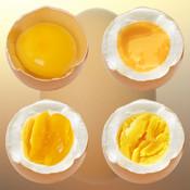 Die perfekte Eieruhr Icon