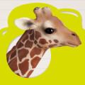 Wer bin ich Tiere entdekcen Icon