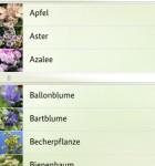 Bienen-App 3