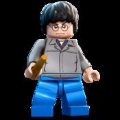LEGO Harry Potter Icon