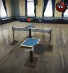 Table Tennis Touch 2