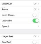 iOS 8 Einstellungen Graustufen