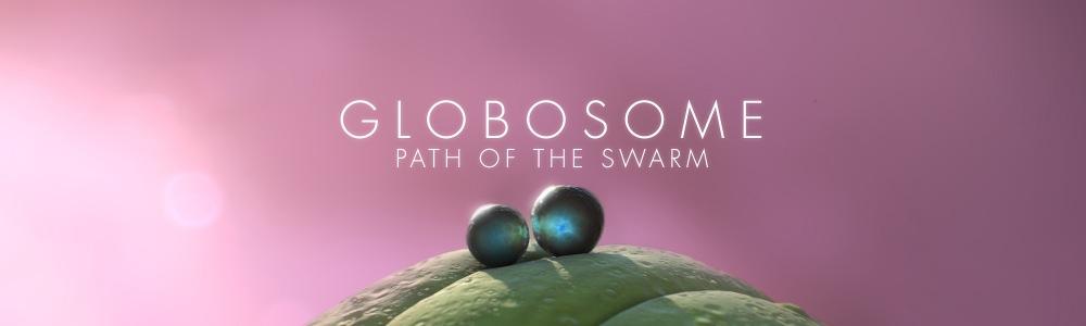Globosome Update