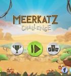 Meerkatz Challenge 1
