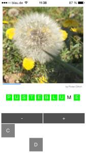PixelContest 1