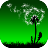 Leaf On The Wind Icon