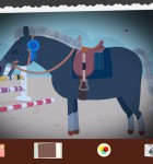 Pony Style Box 4