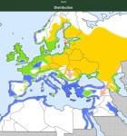 Vogelstimmen Europas 4