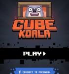Cube Koala 1