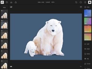 Polarr