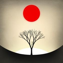 Prune: Wunderschönes Zen-Puzzle aus dem App Store