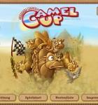 Camel Up 1