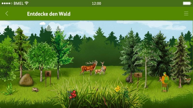 Die Waldfibel
