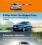 Volkswagen Die Autosuche 1