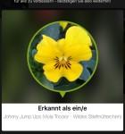 LikeThat Garden 3