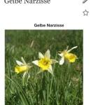 LikeThat Garden 4