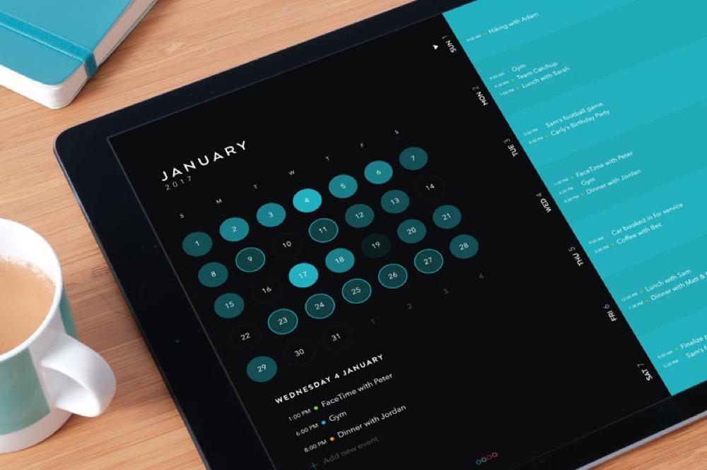 Moleskine Timepage iPad