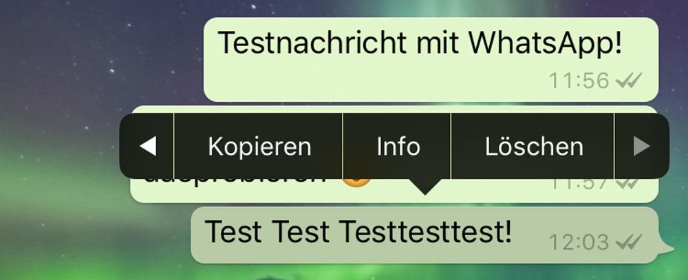 WhatsApp Loeschen