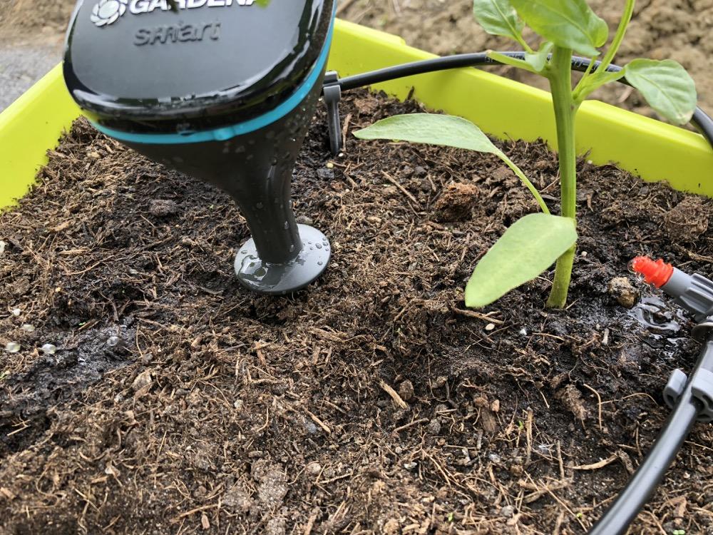 Gardena Smart Sensor mit Micro Drip