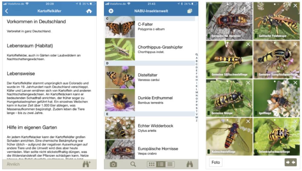NABU Insektenwelt