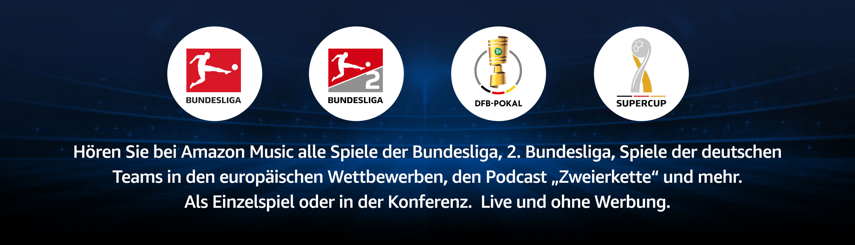 Bundesliga Saison 2018 2019 (2)